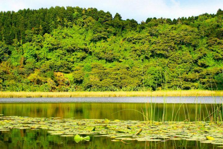 Laguna de Alegría  Volcan 80 jours voyages