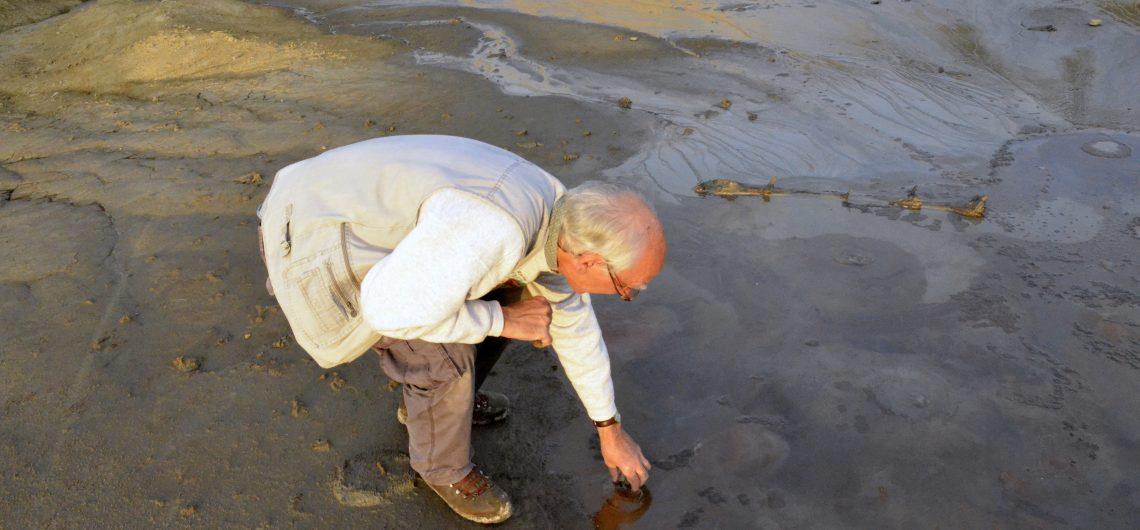 Norbert Choisi - Volcans de boue