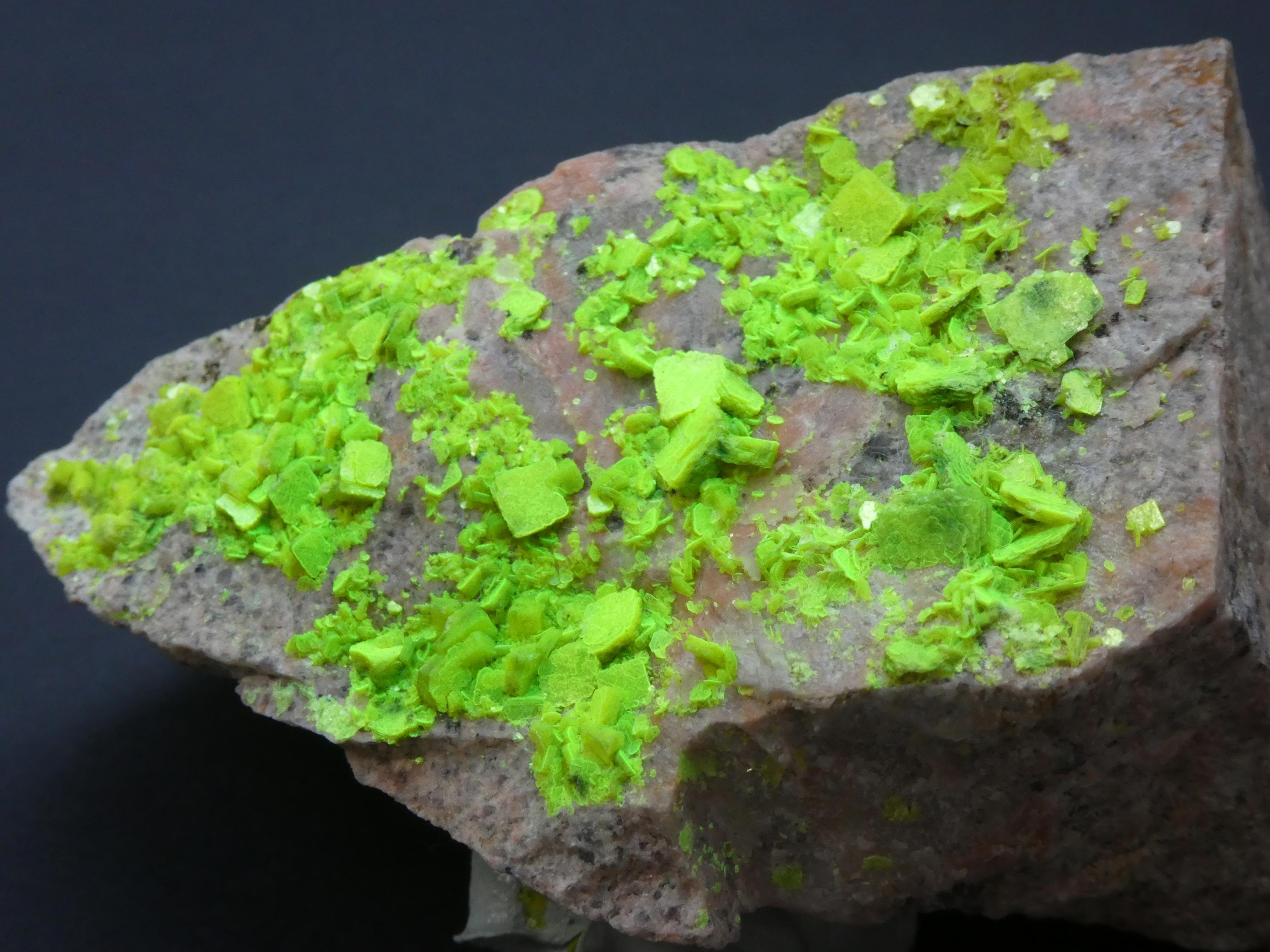 Minéral Eclairage fluorescent Autunite, St.Priest-la-Prugne,Loire,France,